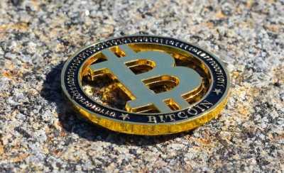 Experto en bitcoins