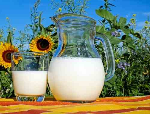 Perito Cártel de la Leche – Industria lactea